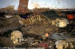 Massacred Rwandans in a church