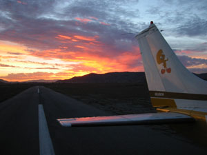 Tweety on the Hemet airport runway at sunset